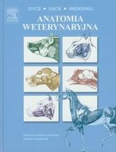 Anatomia weterynaryjna