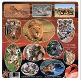 Africká divočina - Magnetky na ledničku