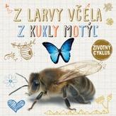 Z larvy včela Z kukly motýľ