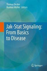 Jak-Stat Signaling: From Basics to Disease