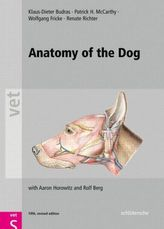 Anatomy of the Dog
