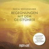 Begegnungen mit dem Geistführer, 1 Audio-CD