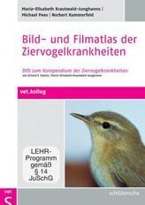 Bild- und Filmatlas der Ziervogelkrankheiten, DVD
